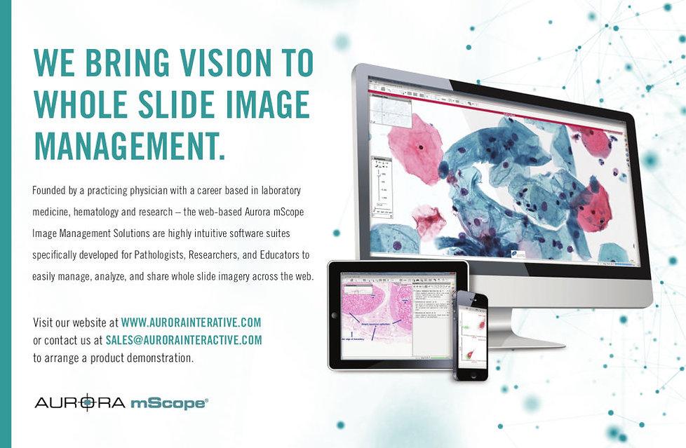 We bring vision to whole slide image management
