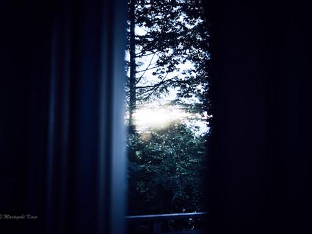 蓼科高原日記/SUNSET IN BLUE