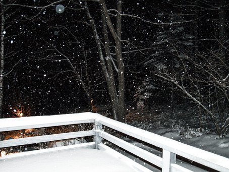 蓼科高原日記/まとまった積雪