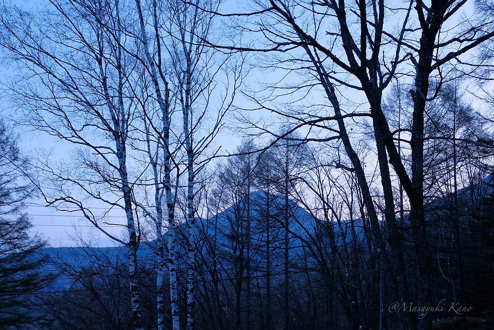 ペンションサンセットのラウンジからの今朝の眺めです。