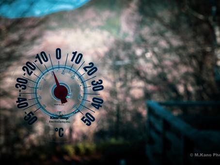 風景の色がどんどん変わる 冬間近の蓼科高原