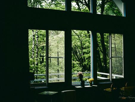 雨は止んで曇り。レンゲツツジが見ごろの蓼科高原。