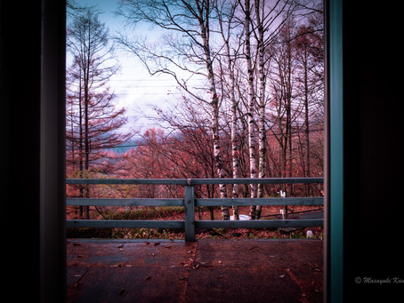 雷鳴を聞く晩秋の日