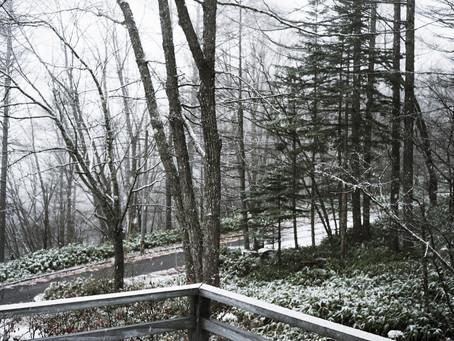 蓼科高原日記/初雪が降りました