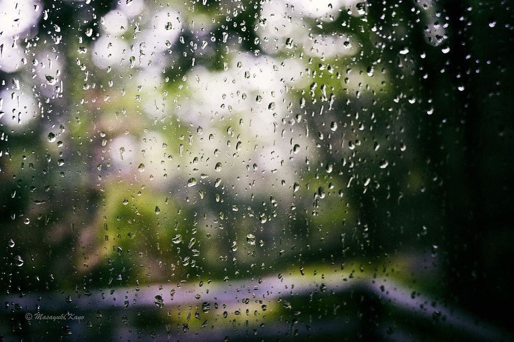 驟雨・蓼科高原の夏の風物詩