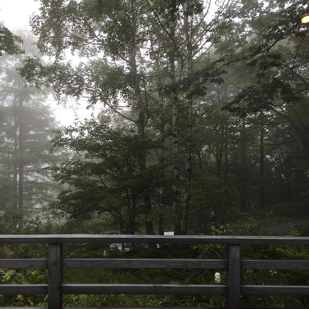 雨の朝|蓼科高原|ペンション・サンセット