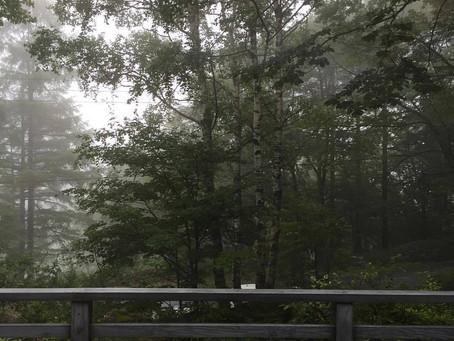 蓼科高原日記/こころの中に雨の降る