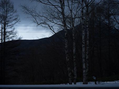 蓼科高原日記/雪が降っています