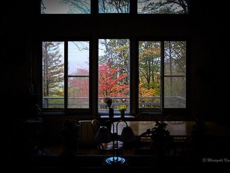 紅葉真っ盛りの蓼科高原