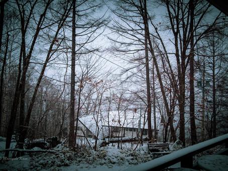この冬初めての本格的積雪の朝です