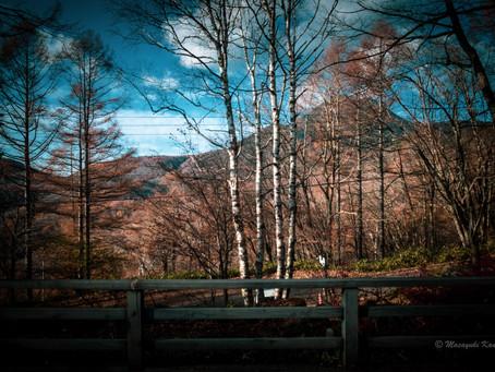 空の色 森の音 蓼科高原の秋