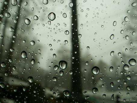 きょうは雨です