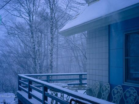 蓼科高原日記/パウダースノーの吹雪