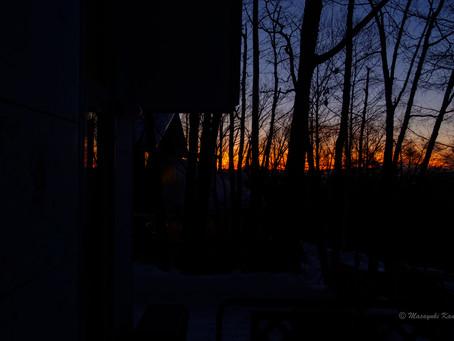 毎日夕焼けがきれい