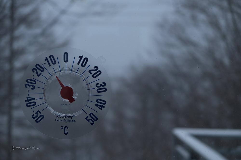 まとまった降雪 蓼科高原
