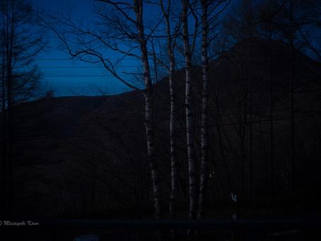蓼科高原日記/夕方、雪が降り始めた