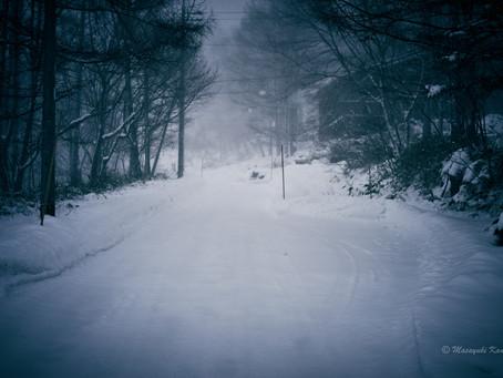 蓼科高原日記/まとまった積雪です