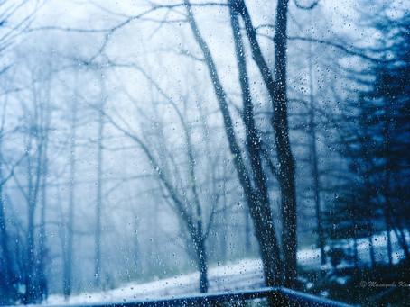 蓼科高原日記/氷点下12℃の雨