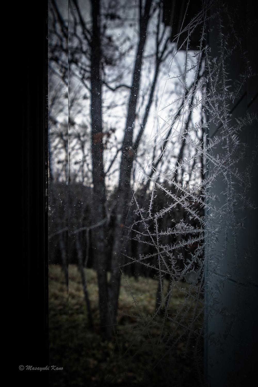 氷点下16℃!窓ガラスに霜が!