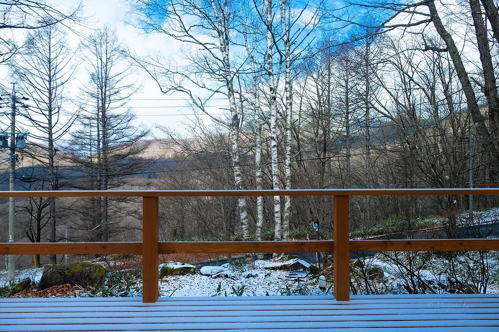 初雪・初積雪の蓼科高原標高1700メートル