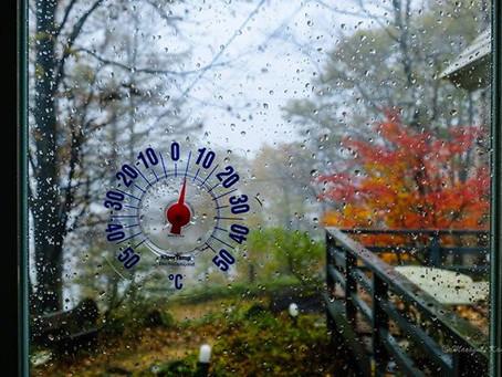 最低気温0℃ 最高気温2℃ 蓼科高原は晩秋 紅葉が美しい