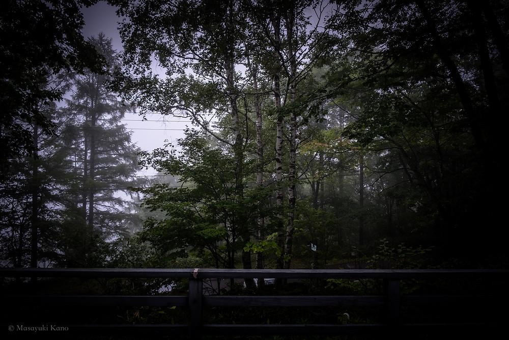 今朝のラウンジ 蓼科高原ペンション・サンセット