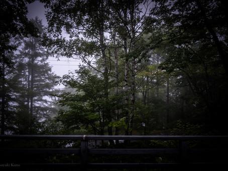 蓼科高原日記:2018/08/25