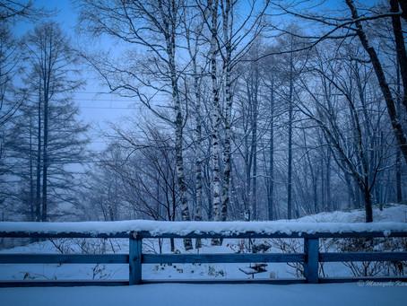 大雪です! #蓼科高原