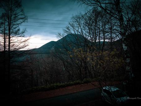 久しぶりの雨 蓼科高原標高1700メートルの森