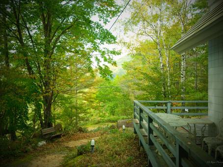 紅葉が美しい 蓼科高原北八ヶ岳標高1700メートルの森