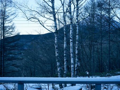 蓼科高原日記/この冬一番の寒さでした