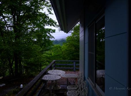 終日雨、午後から本降りの強い雨に変わった。
