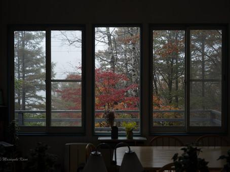 蓼科高原日記/秋の氷雨も明日は晴れ