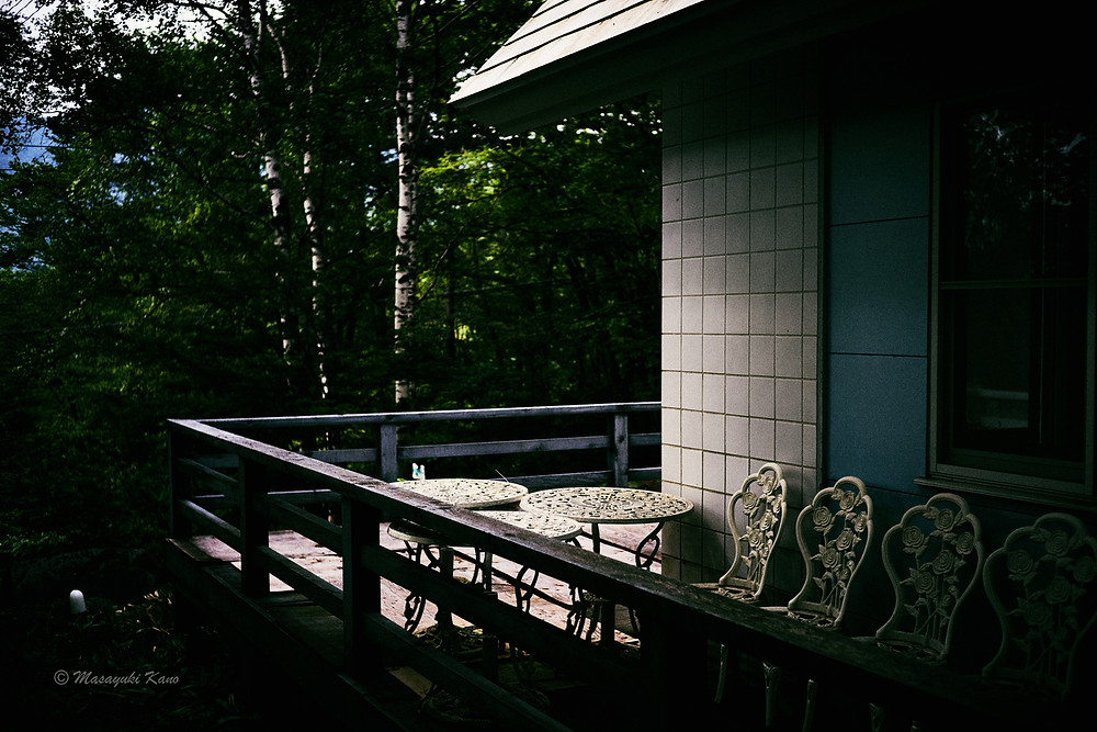 スッキリしないお天気だけれど涼しくて野鳥が謳って本当に気持ちが良い蓼科高原です。
