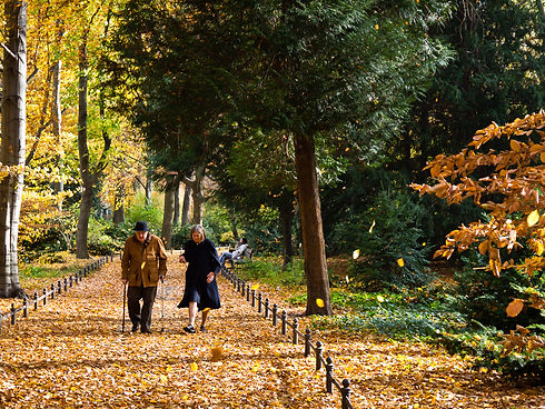 older couple walking.jpg