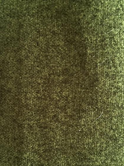 Fabric per meter: Wool 9777 green