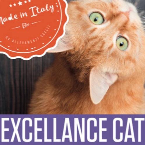 Excellent Cat | Hops