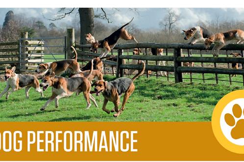 Dog Performance | Hops