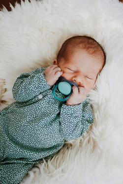 Newborn Fazeny Fotografie