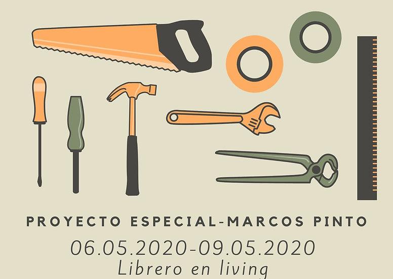 Proyecto especial - Marco Pinto (repisas)