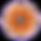 Screen Shot 2019-05-27 at 1.14.17 PMrevi
