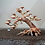 Thumbnail: Dragon Wood Tree - 12 inch -3