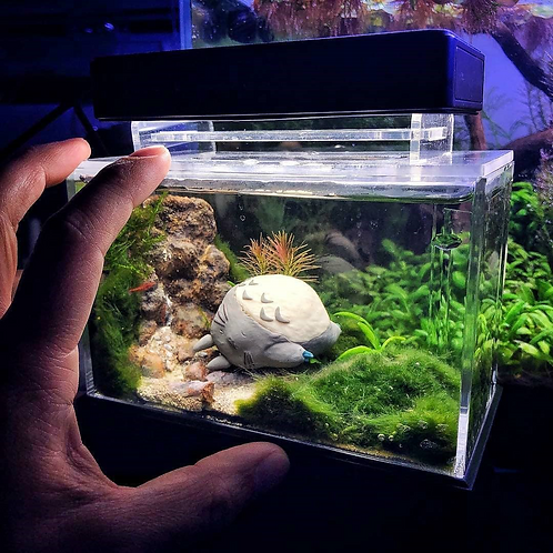 Freshwater Mini Complete Tank