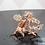 Thumbnail: Dragon Wood Tree - 6 inch