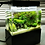 Thumbnail: Freshwater Mini Complete Tank