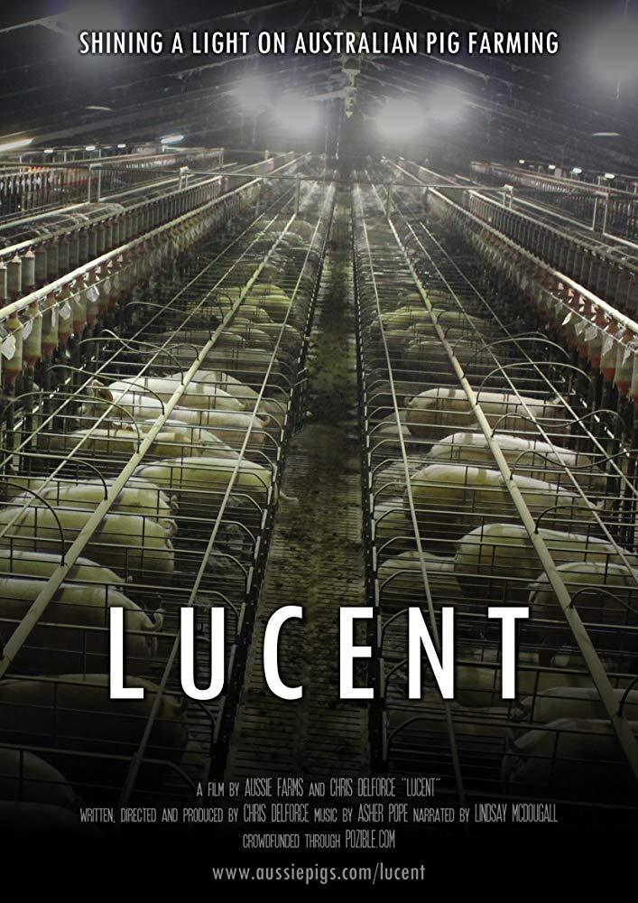 17. Lucent