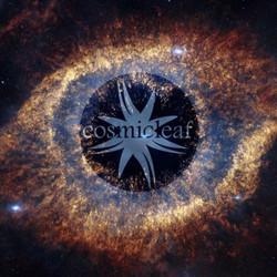 Cosmicleaf Records