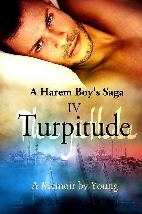 A Harem's Boy's Saga: Part 4: Turpitude