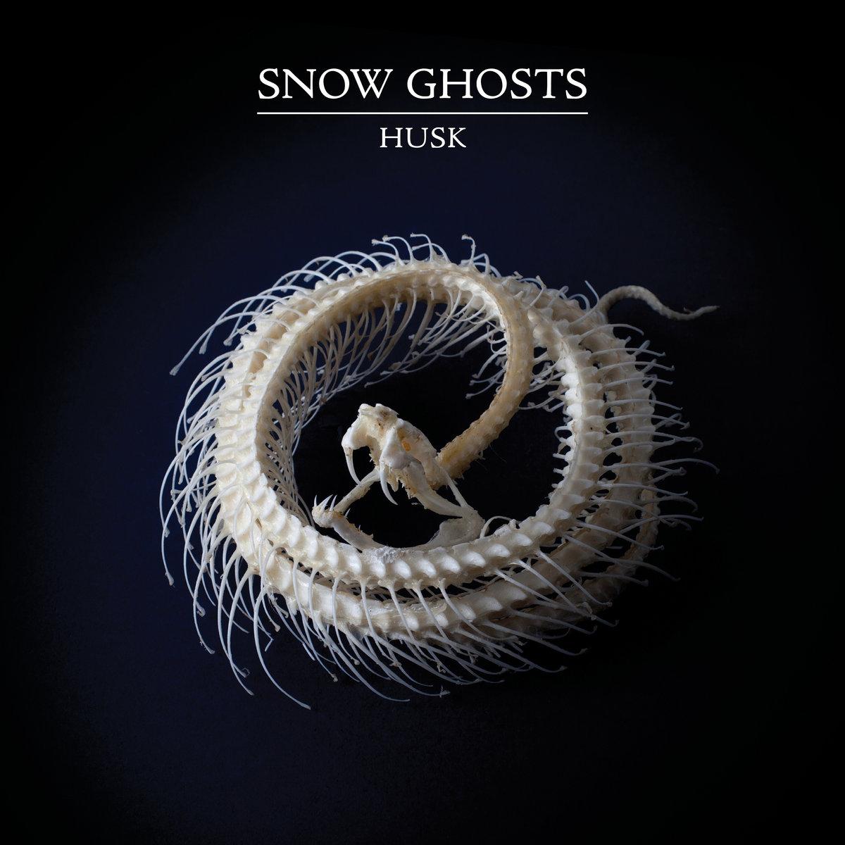 47. Snow Ghosts - Husk