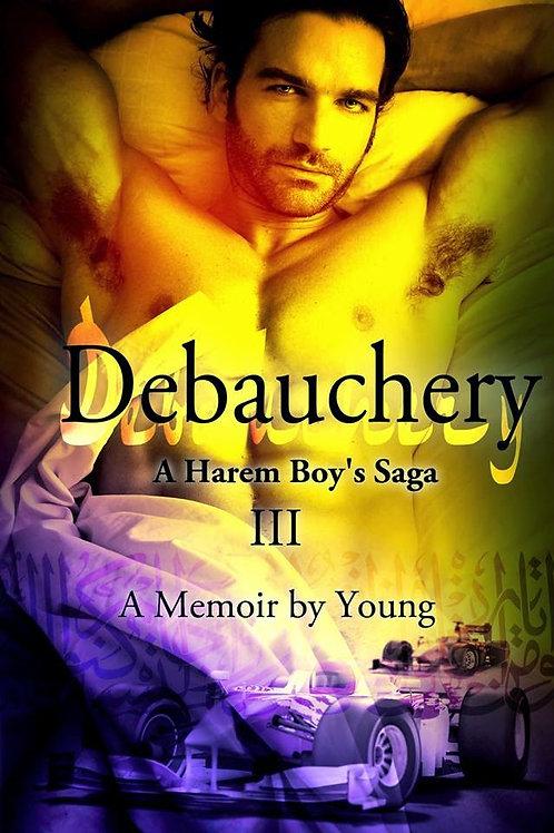 A Harem's Boy's Saga: Part 3: Debauchery
